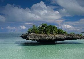 Elusive Aldabra