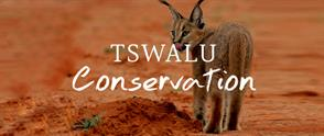 Tswalu Conservation