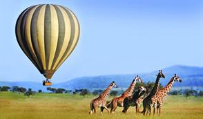 FLOAT ABOVE THE SERENGETI, TANZANIA